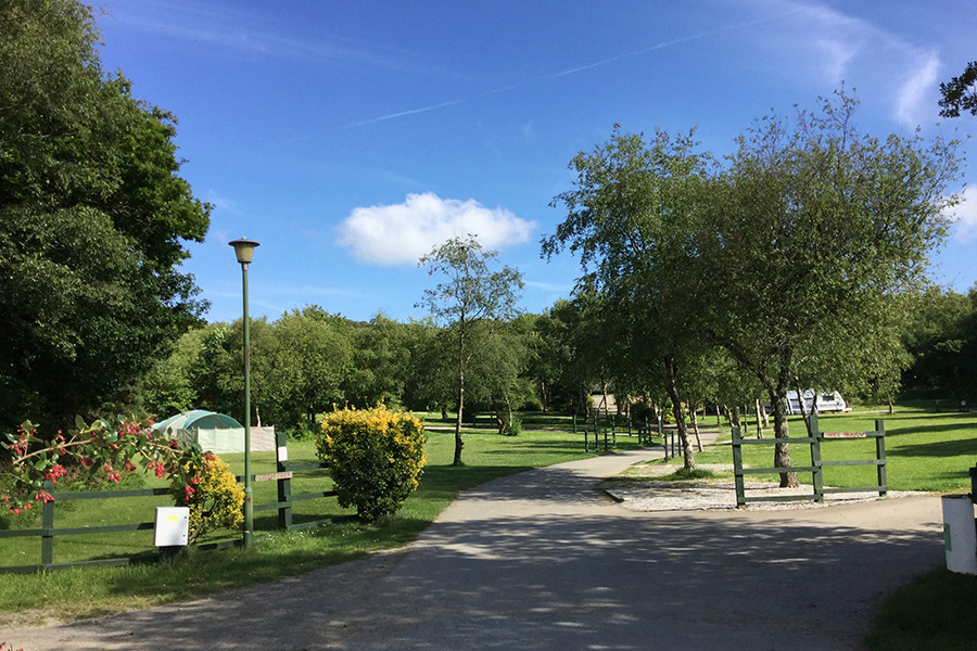 Hedley-Wood-Holiday-Park
