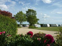 Delph Bank Touring Caravan and Camping Park, Spalding,Lincolnshire,England